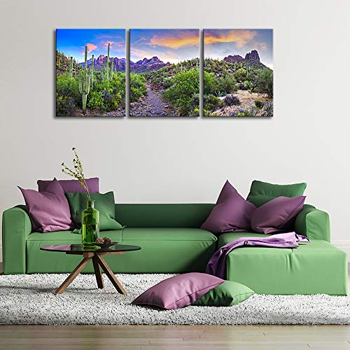 KLVOS 3 Piece Tropical Plants Canvas Wall Art Saguaros in Sonoran Desert Arizona Picture Print on Canvas Landscape Modern Home Decor Stretched and Framed Ready to Hang – 16 x20 x3 Panels