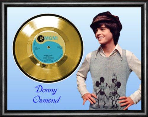 PlecStrum Discs Donny Osmond Puppy Love Gold Vinyl Record Framed Display