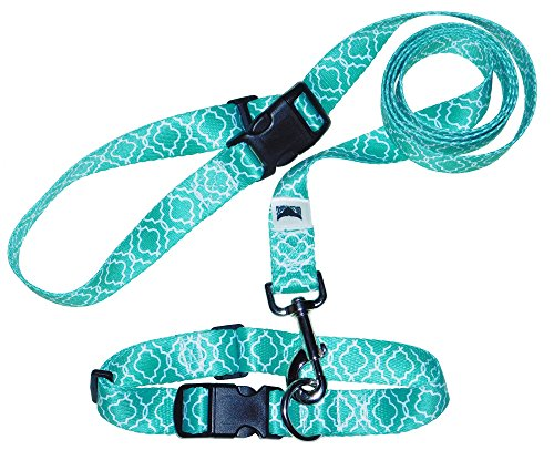 Adjustable Dog Collar with Click  Stay Leash, Unique Design, Handmade In America By Wild Swag. (Medium, Blue)