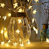 the purple tree Decorative Star String Plastic LED Lights- 3 Meter (White)