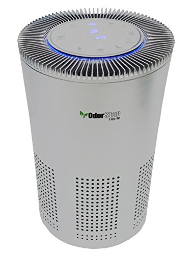 OdorStop HEPA Air Purifier with H13 HEPA Filter, UV Light, Active Carbon, Multi-Speed, Sleep Mode and Timer (OSAP5, Silver Gray) (List Of Literary Devices For Middle School)
