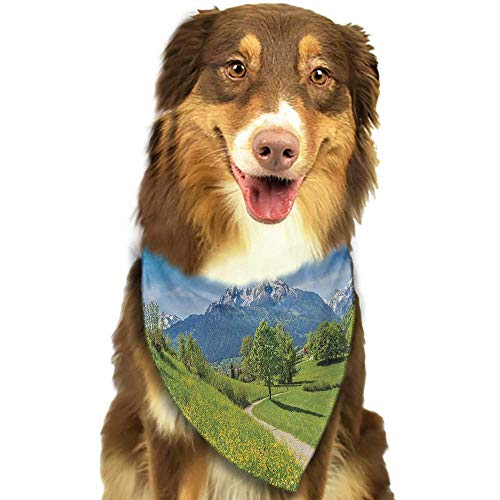 Custom pet Scarf Mountain Spring Scenery in Alps with Floral Grass and Snowy Mountain Tops in Rural Village W27.5 xL12 Scarf for Small and Medium Dogs and Cats