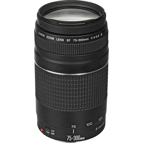 - Canon EF 75-300mm f/4-5.6 III Telephoto Zoom Lens for Canon SLR Cameras (Renewed)