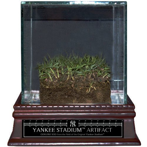 Steiner Sports MLB New York Yankees Authentic Yankee Stadium