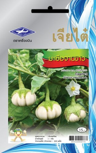 White Eggplant - Dish Like (280 Seeds)Quality Seeds - 1 Package FBA ,Best Seller Ribbit - 1 Kg Tower