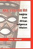 Making Strategic Plans Work, Chiku Malunga, 1906704163