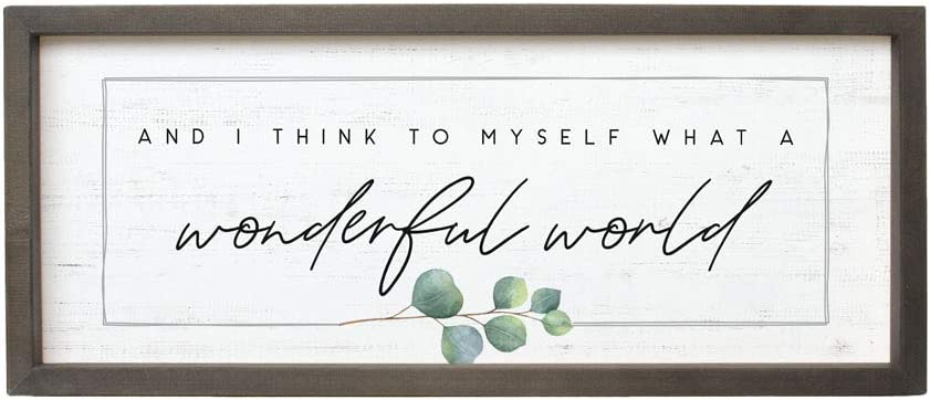 Simply Said, INC Farmhouse Frames- What a Wonderful World, 10 x 24 in Rustic Wood Sign FF1161
