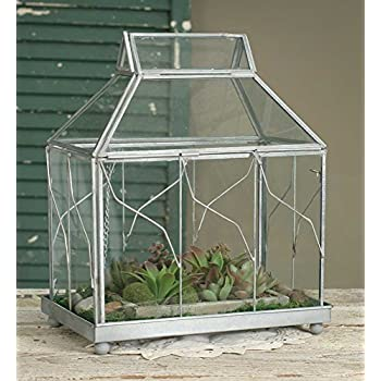 Table Top Terrarium From Colonial Tin Works