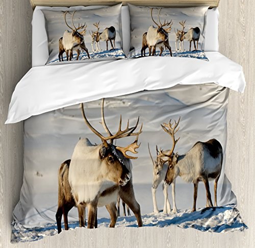 (Ambesonne Winter Duvet Cover Set King Size, Reindeers in Natural Environment Tromso Northern Norway Caribou Antler Wildlife, Decorative 3 Piece Bedding Set with 2 Pillow Shams,)