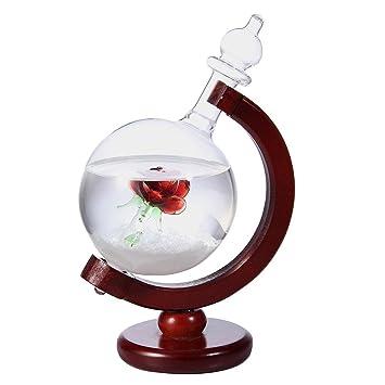 Cristal detector de tormentas PAWACA, elegante y creativo, botella de predicción meteorológica, de