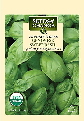 - Seeds of Change S10690 Certified Organic Genovese Sweet Basil, 200 Seed Count