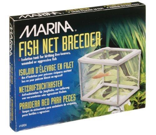 Marina-Trap, Rete di Fine Marina