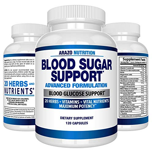 Blood Sugar Support Supplement - 20 Herbs & Multivitamin for Blood Sugar Control with Alpha Lipoic Acid & Cinnamon - 120 Pills - Arazo Nutrition (Best Cinnamon To Lower Blood Sugar)