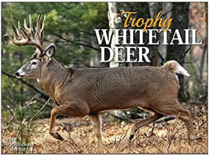 Deer Calendar 2019 Amazon.: Trophy Whitetail Deer 2019 Wall Calendar   18