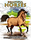 Beautiful Horses - Coloring Book for Adults: more info