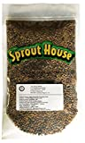 The Sprout House Veggie Queen Salad Mix Certified Organic Non-gmo Sprouting Seeds - Red Clover, Red Lentil, French Lentil, Daikon Radish, Fenugreek 1 Pound