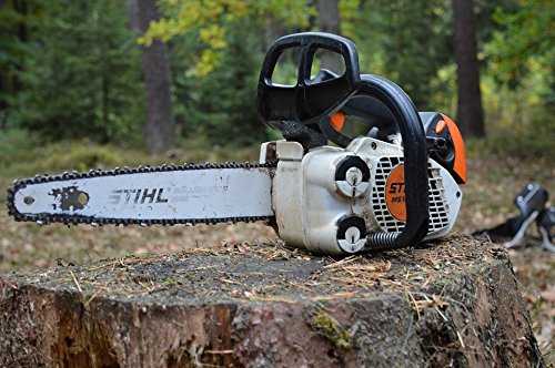 Home Comforts LAMINATED POSTER Wood Carving Pila Chainsaw Mo