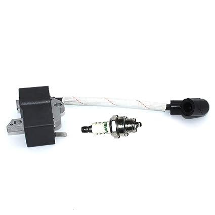 Amazon.com: P SeekPro - Módulo de encendido con bujía BM6A ...