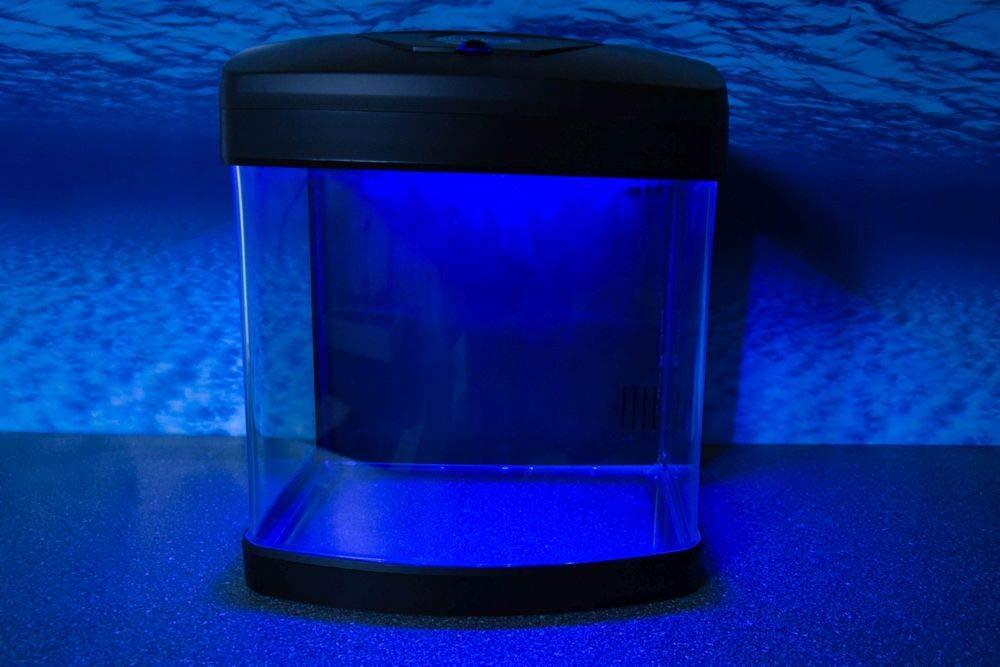Nano Acuario xcube Negro Completo Acuario + LED Iluminación + Luz de la luna + Filtro: Amazon.es: Productos para mascotas