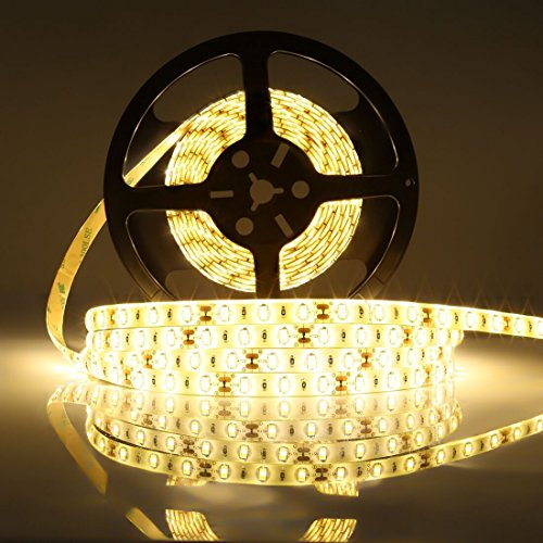 LEDMO 2 Roll Flexible LED Strips, DC12V LED Light Strip Waterproof,300 Units SMD5630 Leds,16.4Ft