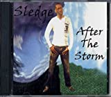 After the Storm by Sledge