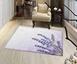 "Lavender Door Mat Small Rug Little Posy of Medicinal Herb Fresh Plant of Purple Flower Spa Aromatheraphy Organic Bath Mat for tub Bathroom Mat 16""x24'' Lavander"