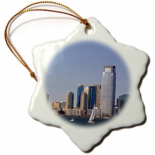 ornaments-to-paint-goldman-sachs-tower-in-jersey-city-new-jersey-us3-dfr3-david-r-frazier-snowflake-