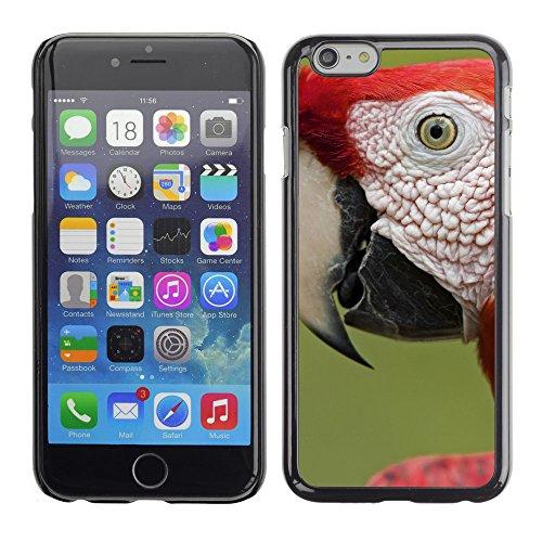 "Premio Sottile Slim Cassa Custodia Case Cover Shell // V00003791 écarlate portrait ara // Apple iPhone 6 6S 6G 4.7"""
