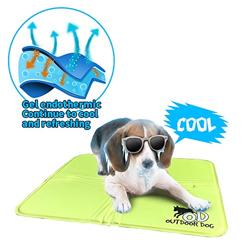ALL FOR PAWS Pet Cool Mat Cool Dog Mat Cooling Pad Dog Bed Mat-M (Green)