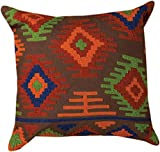 Decorative Pillows - ''Kings Canyon'' Embroidered Throw Pilow - 16'' Square