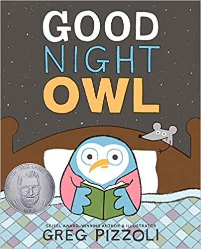 cover of good night owl
