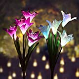 Outdoor Solar Garden Stake Lights – BOXYM Premium 2 Pack Solar Powered Lights with 8 Lily Flowers, Multi-Color Changing LED Solar Decorative Lights for Garden, Patio, Backyard (Purple and White) Review