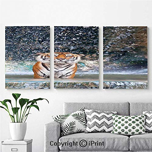Canvas Prints Modern Art Framed Wall Mural Image of a Large Majestic Tiger in The Waterfall Exotic Wildlife Animal in Nature for Home Decor 3 Panels,Wall Decorations for Living Room Bedroom Dining R