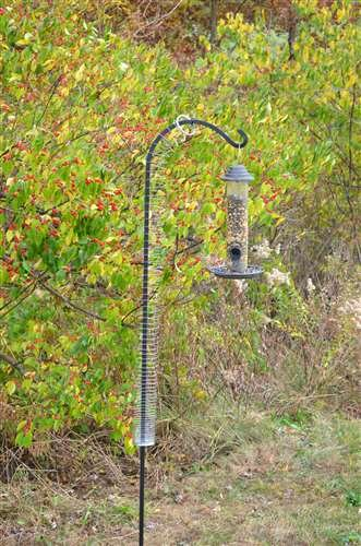 Songbird Essentials Squirrel Spring Device