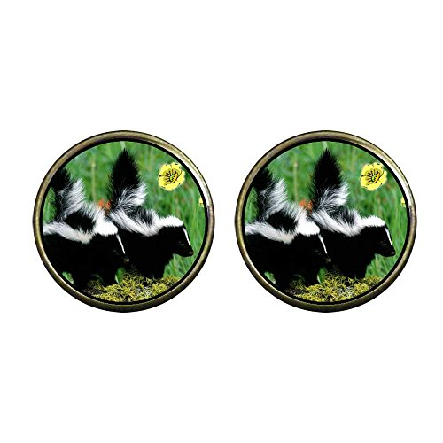 GiftJewelryShop Bronze Retro Style Wildlife Skunk Photo Clip On Earrings 14mm Diameter ()