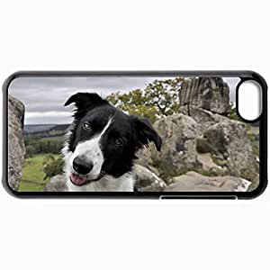 Personalized Protective Hardshell Back Hardcover For iPhone 5C, Border Collie Design In Black Case Color