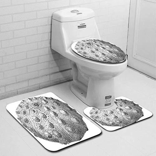 MTSJTliangwan Home Bathroom 3 Piece Sets, Included Bath Area Rug+Contour Mat+Lid Toilet Seat Cover 19th Century Engraving of an Echinoid sea Urchin Flannel Carpet