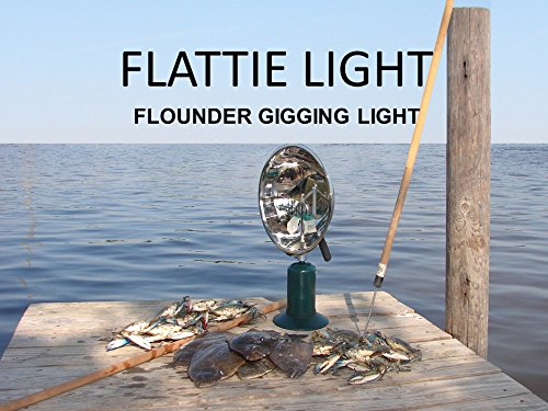 Aluminum Cylinder Floor Lamp (Flattie Light)