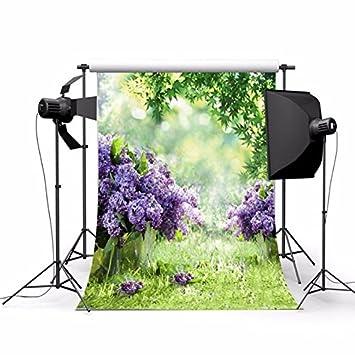 Telon photocall Estudio Fotográfico, Vídeo TV fotografia Boda, bautizos, graduacion, cumpleaños,
