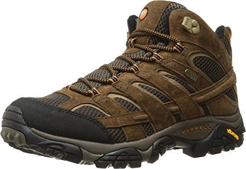 Merrell Men's Moab 2 Mid Waterproof Hiking Boot, Earth, 8 M US