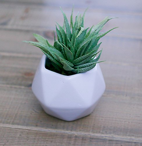 Small Silk Aloe Succulent Plant in Geometric White Ceramic Vase