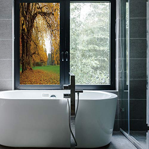 ALUON Frosted Window Film Stained Glass Window Film,Fall,Work Well in The Bathroom,Autumnal Park with Big Ancient Oak Tree and,24''x48''