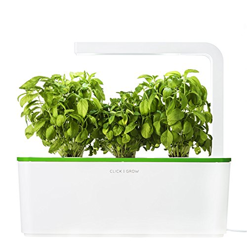 Grow Light Herb Garden - 4