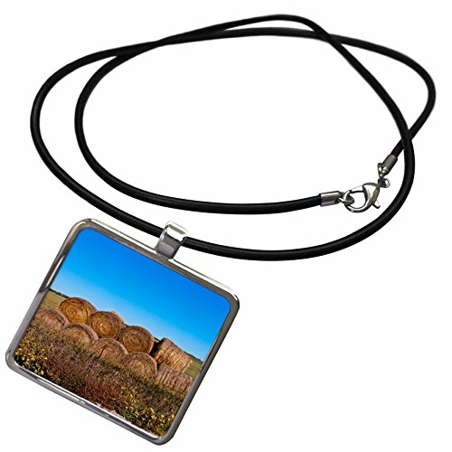 (3dRose Danita Delimont - Agriculture - USA, Nebraska, Crawford, Stacked Round Hay Bales - Necklace with Rectangle Pendant)