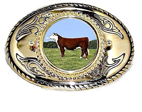 HEREFORD COW BOVINE GOLD BELT BUCKLE