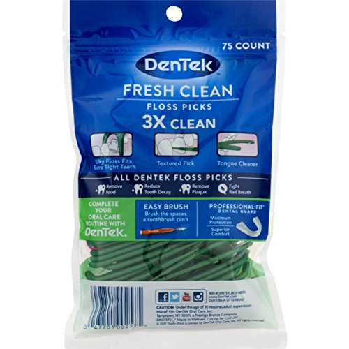 DenTek Fresh Clean Floss Picks with Long Lasting Mint | 75-Count per pack | 1-Pack