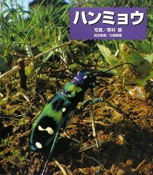 Read Online Hanmyō PDF