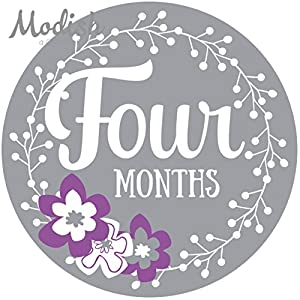 12 Monthly Baby Stickers, Purple, Gray, Flowers, Girl, Baby Belly Stickers, Baby Month Stickers, First Year Stickers Months 1-12, Purple, Grey, Baby Girl 6