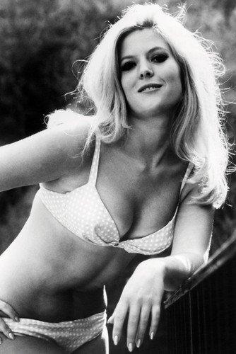 Meredith Macrae Petticoat Junction Stunning Pin Up In Bikini 24X36 Poster from Silverscreen