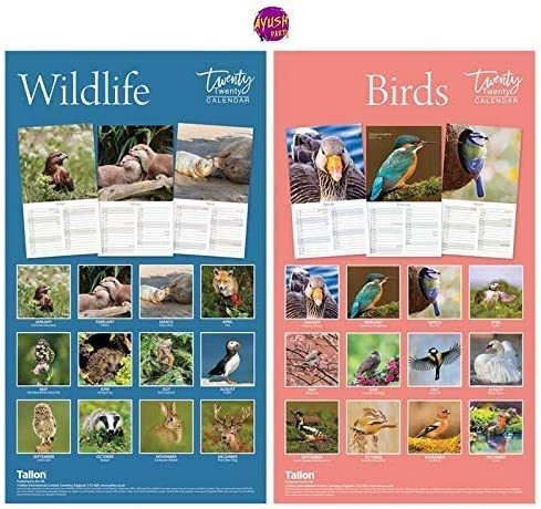 2020 A4 Wall Calendar Midi Birds /& UK Wildlife 2020 Wall Calender Perfect Gift Planner for All as Personal Organiser for Year Planner 2020 Wall from Ayush Party